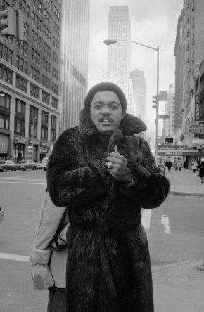 Reggie in fur